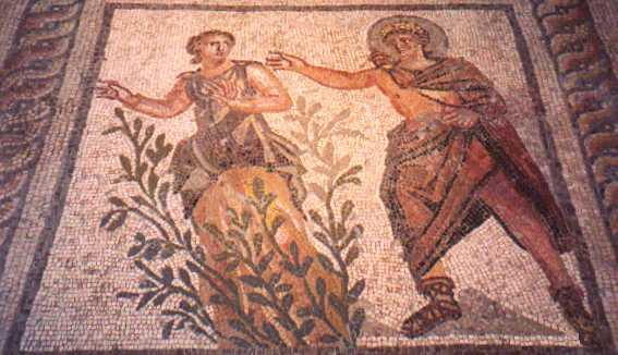 daphni and apollo myth mosaic